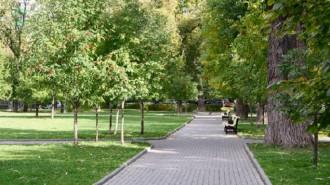 В парке «Барыши» появится аллея поцелуев