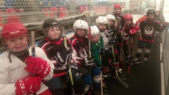 На уроке, который провел тренер-преподаватель Сергей Мишнев, присутствовало 12 юных хоккеистов.