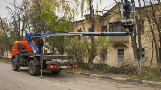 derevya-still001