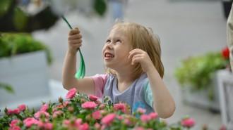 В рамках фестиваля «Цветочный джем» в Москве прошел конкурс цветников. Фото: архив