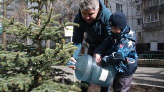 Сорта растений выбрали активные граждане. Фото: Павел Волков