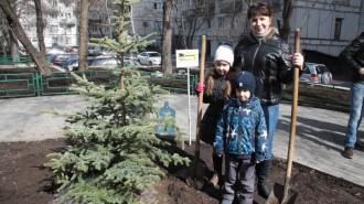 Московские дворы озеленят по решению активных граждан. Фото: Павел Волков