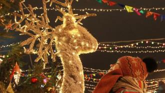 Новый год к нам мчится: москвичи рассказали, как хотят отметить праздник в парках. Фото: архив