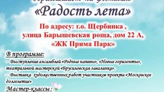 Фестиваль_Радость_лета-20.07