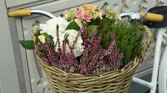 В Москве проходит фестиваль «Цветочный джем». Фото: архив