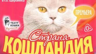 afisha_cats