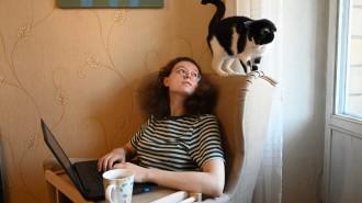 Москвичей с симптомами ОРВИ обязали соблюдать самоизоляцию. Фото: архив