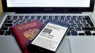 Инструкция по использованию цифрового пропуска появилась на портале Мэра Москвы. Фото: сайт мэра Москвы