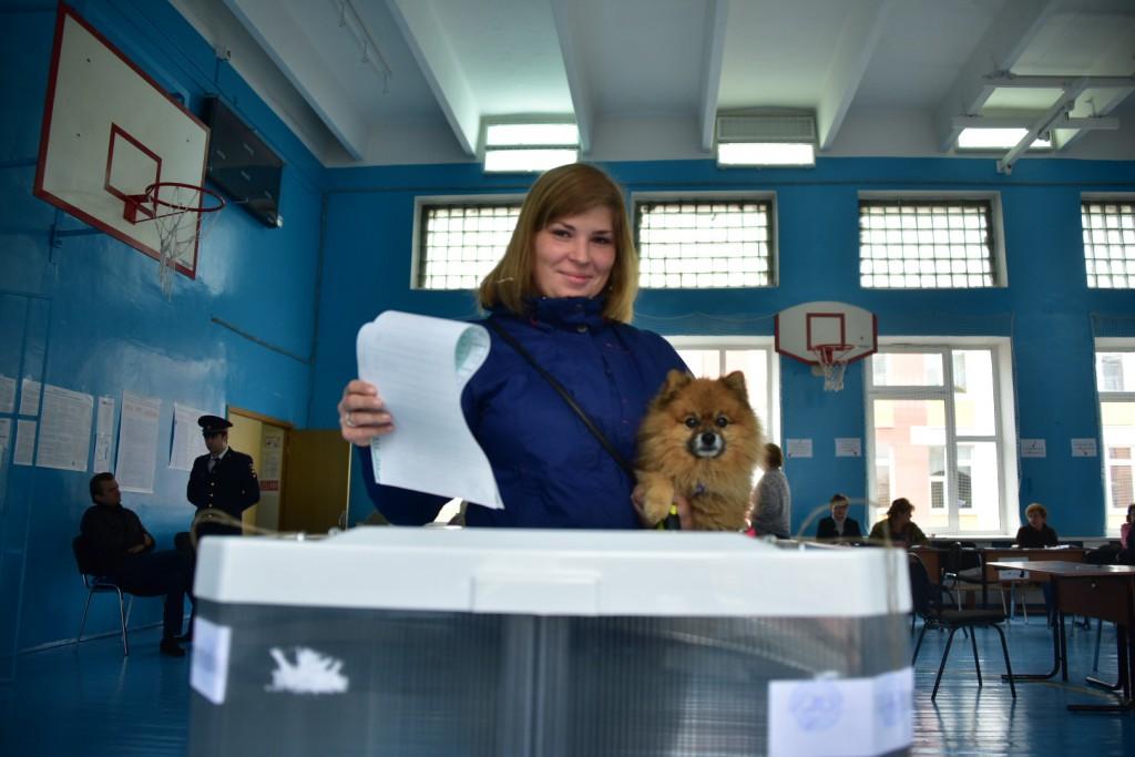 Социологи рассказали о лидирующих позициях «Единой России» во всех опросах. Фото: архив